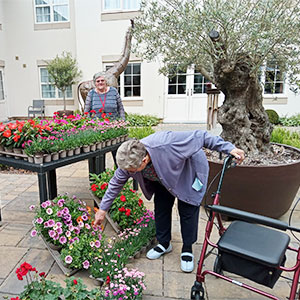 Blooming marvellous donation for Walberton Place Care Home